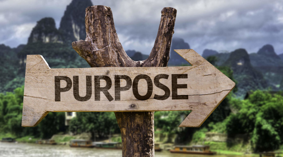 How To Find Purpose In Life